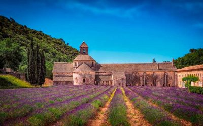 Les routes de la lavande en Provence